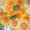 Ong teen góp mật ươm trồng cánh đồng Mặt trời