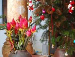 384189 300x231 Sa Pa, mùa Giáng sinh rét đậm