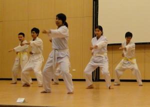 DSC00664 300x214 Tổng kết tiết mục cho Hội Trường của các CLB võ thuật