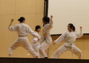 DSC00700 300x212 Tổng kết tiết mục cho Hội Trường của các CLB võ thuật