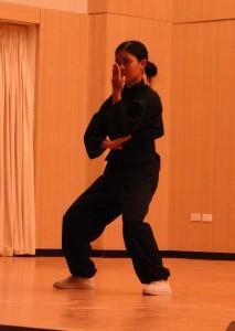 DSC00710 213x300 Tổng kết tiết mục cho Hội Trường của các CLB võ thuật